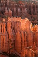 Bryce is Glowing by tourofnature