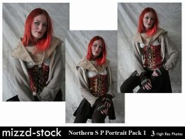 Northern Sky P Portrait Pack 1 by mizzd-stock