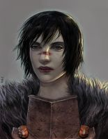 Hawke by Enlai-Hai
