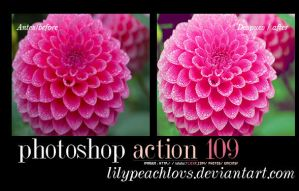Action 109 Lilypeachlovs by lilypeachlovs