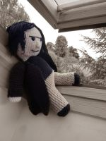 Snape has a lookout by button-bird