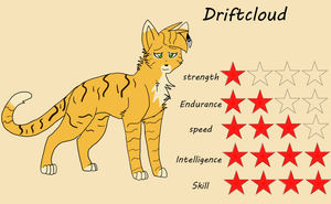 [ TDC ANIMATION ] Reference sheet Driftcloud by SpiderRen