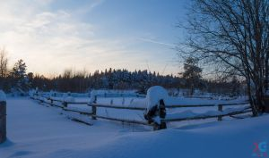 Winter Evening by sacso