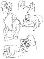 Narusaku wolf sketches by wolffuchs