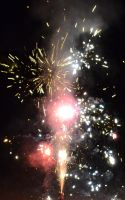 Fourth of July 2013 Fireworks 2 by Singing-Wolf-12