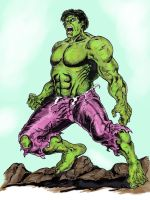 Hulk colored with Sketchbook pro. by VincentBryantArt