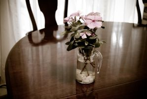 Tabletop Flowers by krazy3