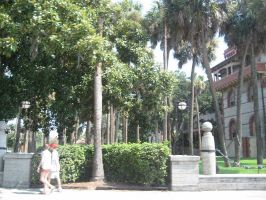 Flagler College - 10 by Dakota15