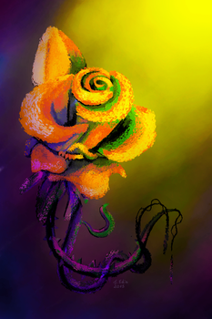 Colourful Rose by Splash-of-Rainbows