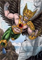 DC Comics 'The New 52' - Hawkman by tonyperna