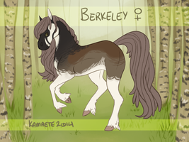 Berkeley Reference Sheet by Kama-ItaeteXIII