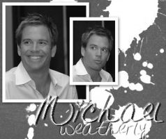 Michael Weatherly by stephanie09