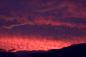 Pink Waves Of Fire II by tCentric-media