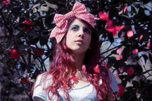 Alice in Wonderland Project. II by decayed-angel