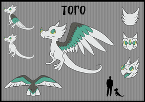 Toro Reference Sheet by Torotix