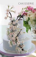 Spring-Cherry-Blossom-Cake-Cakisserie by cakisserie