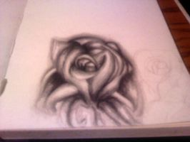 black and white rose by Wolf-Lady-bsparks85