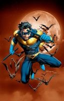 Nightwing Print by aethibert