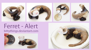 Ferret - Alert - SOLD by Bittythings