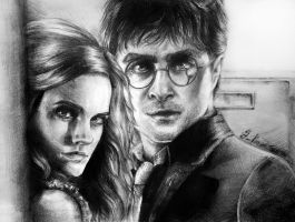 Harry and Hermione by GabrielleGrotte