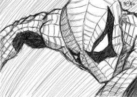 Spider-Man sketch by zaobhok