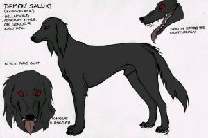 Saluki by IsolatedHowl