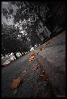 Urban autumn by CarloNs