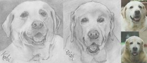 kobi and mate smile for the pencil by nev777