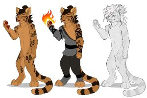 Hiiro Reference by AnnieHyena