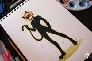 Chat Noir by Paulinaapc