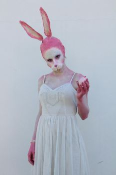Bunny by Fran-photo