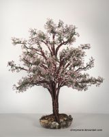 Royal  crab apple tree       Pommetier Royal by ohmymarie
