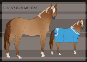 BRlS Soul of my Heart 29 | SOLD by BRls-love-is-MY-Live