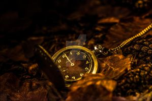 Time goes by... II by db-photoblogDOTcom