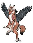 Winged Coyote by Kitsune--Rin