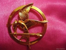 MY MOCKINGJAY PIN!!!!! by sorandkiari