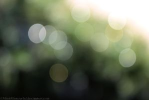 Nature's Bokeh by MinhMonsterful