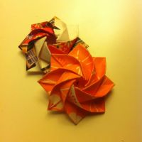 Round Rose by refold