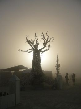 Bone Tree in the Dust by maggiemayday
