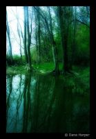 Forever Green II by chaoticparadox