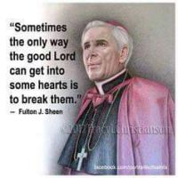 vulnerable Fulton J. Sheen quote by chocolateSnow20
