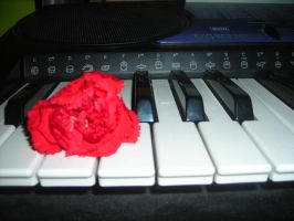 keys of love by 4EverUnknown