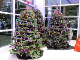 2014 Phoenix Suns Christmas Trees by BigMac1212