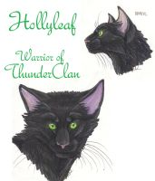 Hollyleaf Faces by MudstarMord-Sith