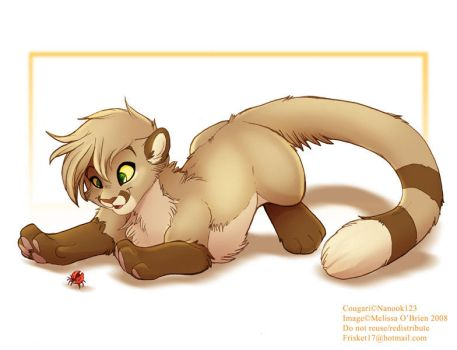 Cougari Finds A Bug by frisket17