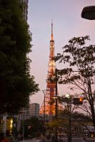Good Night Tokyo Tower by MarcAndrePhoto