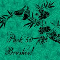 Pack 50 Brushes by Lalamarlali