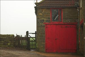 Red Door and Gate by handfat