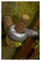 Hinge on a gate by dkj1974