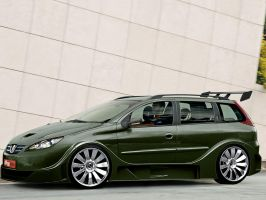 Peugeot 206 SW by cananea